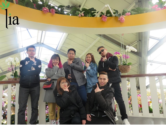 Các học viên của LIA đi chơi Hà Lan - 7